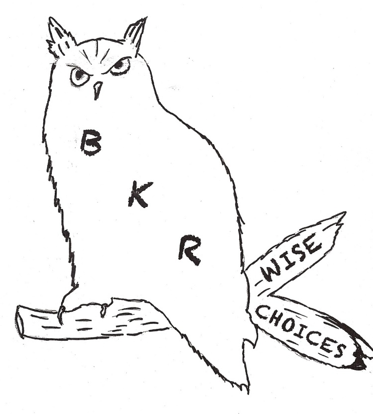 BKR Wise Choices: Brown, Keya Paha, and Rock Counties
